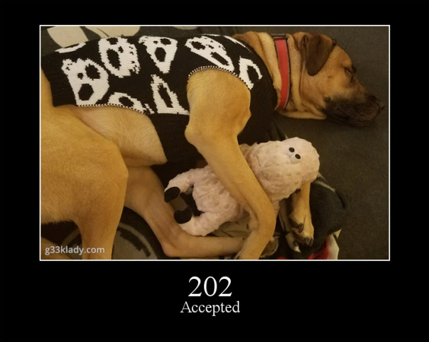 202Accepted_img
