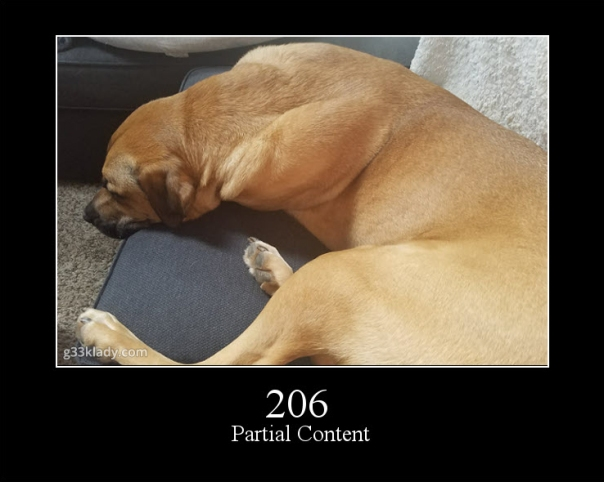 206PartialContent_img
