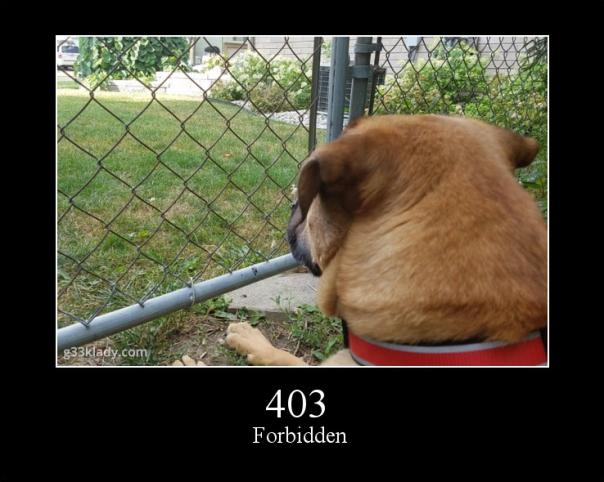 403Forbidden_img