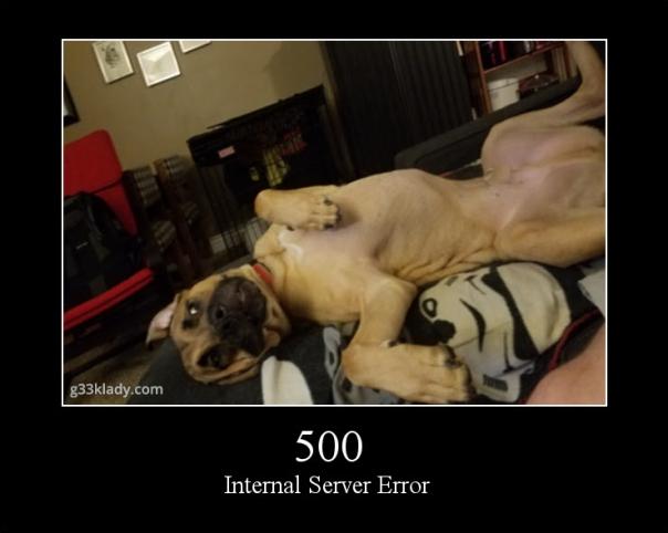 500internalServerError_img